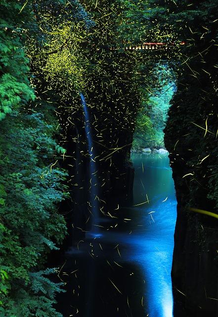 第49回キャノンフォトコンテスト・グランプリ受賞作品「峡谷の蛍」
